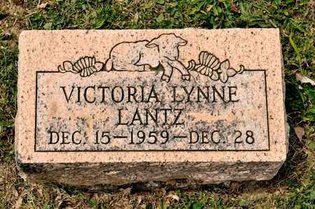 LANTZ, VICTORIA LYNNE - Richland County, Ohio | VICTORIA LYNNE LANTZ - Ohio Gravestone Photos