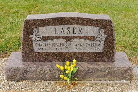DALLUM LASER, ANNA - Richland County, Ohio | ANNA DALLUM LASER - Ohio Gravestone Photos