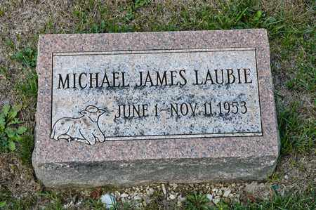 LAUBIE, MICHAEL JAMES - Richland County, Ohio | MICHAEL JAMES LAUBIE - Ohio Gravestone Photos