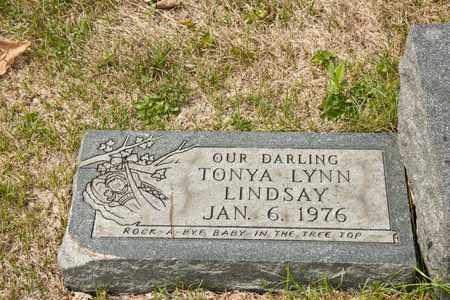 LINDSAY, TONYA LYNN - Richland County, Ohio | TONYA LYNN LINDSAY - Ohio Gravestone Photos