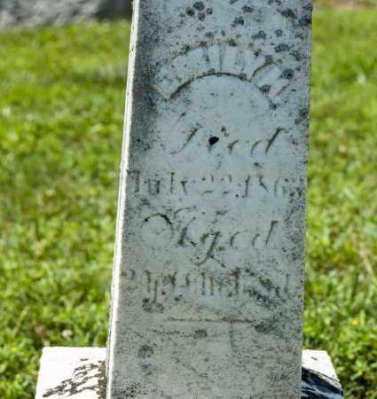 LUTZ, EMILY H - Richland County, Ohio | EMILY H LUTZ - Ohio Gravestone Photos