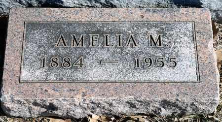 LUX, AMELIA M - Richland County, Ohio | AMELIA M LUX - Ohio Gravestone Photos