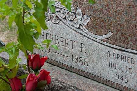 LUX, HERBERT F - Richland County, Ohio | HERBERT F LUX - Ohio Gravestone Photos