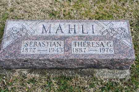 MAHLI, THERESA G - Richland County, Ohio | THERESA G MAHLI - Ohio Gravestone Photos