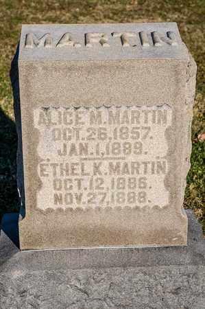 MARTIN, ALICE M - Richland County, Ohio | ALICE M MARTIN - Ohio Gravestone Photos