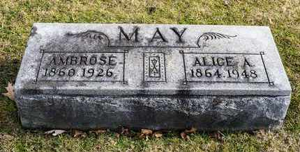MAY, ALICE A - Richland County, Ohio | ALICE A MAY - Ohio Gravestone Photos