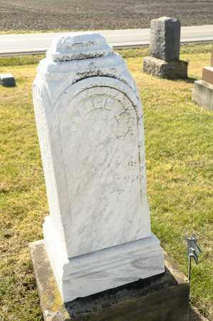 MAY, FRANCIS L - Richland County, Ohio | FRANCIS L MAY - Ohio Gravestone Photos
