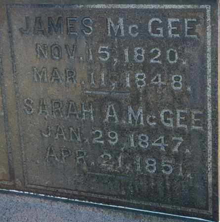 MCGEE, JAMES - Richland County, Ohio | JAMES MCGEE - Ohio Gravestone Photos