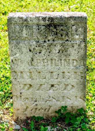 MILLER, DANIEL - Richland County, Ohio | DANIEL MILLER - Ohio Gravestone Photos