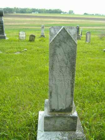 MILLER, ODEMIA - Richland County, Ohio | ODEMIA MILLER - Ohio Gravestone Photos