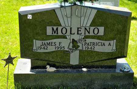 MOLENO, JAMES F - Richland County, Ohio | JAMES F MOLENO - Ohio Gravestone Photos