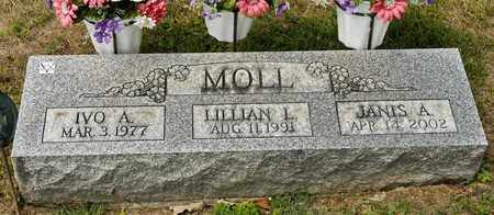 MOLL, LILLIAN L - Richland County, Ohio | LILLIAN L MOLL - Ohio Gravestone Photos
