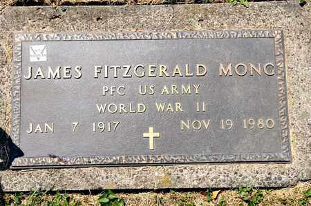 MONG, JAMES FITZGERALD - Richland County, Ohio | JAMES FITZGERALD MONG - Ohio Gravestone Photos