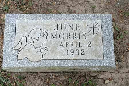 MORRIS, JUNE - Richland County, Ohio | JUNE MORRIS - Ohio Gravestone Photos