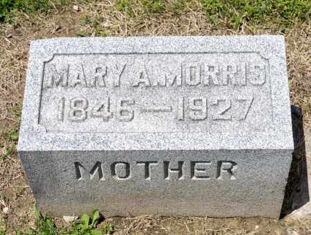 OBERLIN MORRIS, MARY A - Richland County, Ohio | MARY A OBERLIN MORRIS - Ohio Gravestone Photos
