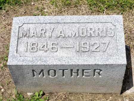 MORRIS, MARY A - Richland County, Ohio | MARY A MORRIS - Ohio Gravestone Photos
