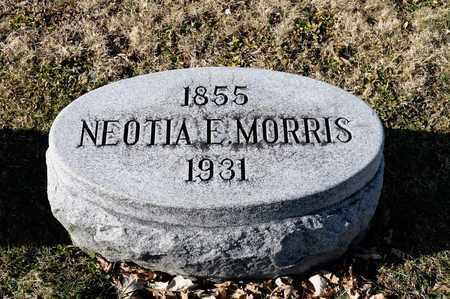 MORRIS, NEOTIA E - Richland County, Ohio | NEOTIA E MORRIS - Ohio Gravestone Photos