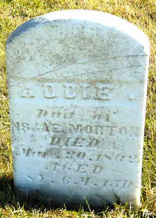 MORTON, ADDIE - Richland County, Ohio | ADDIE MORTON - Ohio Gravestone Photos
