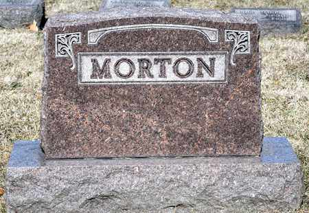MORTON, WILLIAM EDWARD - Richland County, Ohio | WILLIAM EDWARD MORTON - Ohio Gravestone Photos