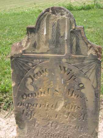 MOSS, JANE - Richland County, Ohio | JANE MOSS - Ohio Gravestone Photos