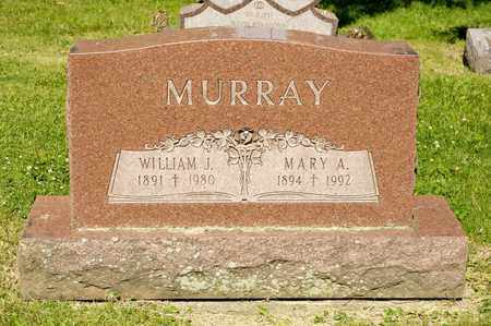 MURRAY, WILLIAM J - Richland County, Ohio | WILLIAM J MURRAY - Ohio Gravestone Photos