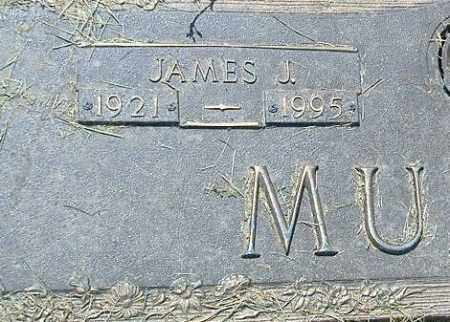 MUSILLE, JAMES J. - Richland County, Ohio | JAMES J. MUSILLE - Ohio Gravestone Photos