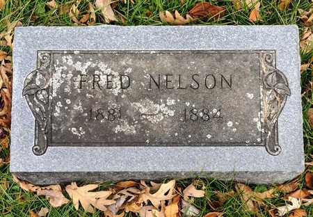 NELSON, FRED - Richland County, Ohio | FRED NELSON - Ohio Gravestone Photos
