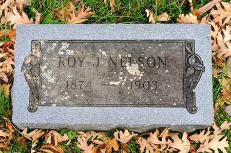 NELSON, ROY J - Richland County, Ohio | ROY J NELSON - Ohio Gravestone Photos