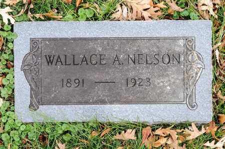 NELSON, WALLACE A - Richland County, Ohio | WALLACE A NELSON - Ohio Gravestone Photos