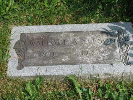 NELSON, WALLACE A. - Richland County, Ohio | WALLACE A. NELSON - Ohio Gravestone Photos
