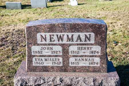 NEWMAN, HENRY - Richland County, Ohio | HENRY NEWMAN - Ohio Gravestone Photos