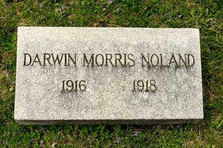 NOLAND, DARWIN MORRIS - Richland County, Ohio | DARWIN MORRIS NOLAND - Ohio Gravestone Photos