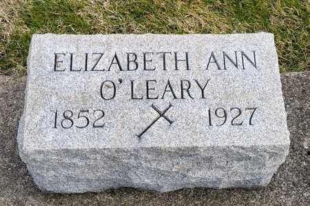 O'LEARY, ELIZABETH ANN - Richland County, Ohio | ELIZABETH ANN O'LEARY - Ohio Gravestone Photos