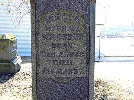 HILTON OSBUN, AMELIA C. - Richland County, Ohio | AMELIA C. HILTON OSBUN - Ohio Gravestone Photos