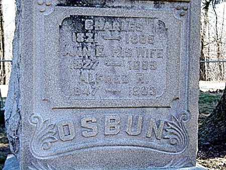 OSBUN, ALFRED R. - Richland County, Ohio | ALFRED R. OSBUN - Ohio Gravestone Photos