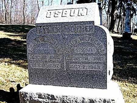 OSBUN, EZRA - Richland County, Ohio | EZRA OSBUN - Ohio Gravestone Photos