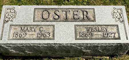 OSTER, MARY C - Richland County, Ohio | MARY C OSTER - Ohio Gravestone Photos