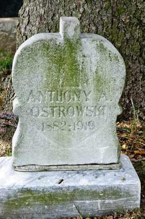 OSTROWKI, ANTHONY A - Richland County, Ohio | ANTHONY A OSTROWKI - Ohio Gravestone Photos