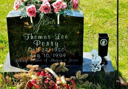 PERRY, THOMAS LEE - Richland County, Ohio | THOMAS LEE PERRY - Ohio Gravestone Photos