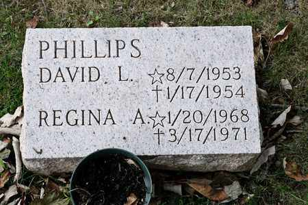 PHILLIPS, DAVID L - Richland County, Ohio | DAVID L PHILLIPS - Ohio Gravestone Photos