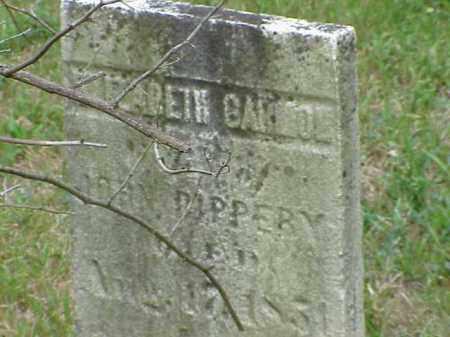 PIPPERY, ELIZABETH GARMON - Richland County, Ohio | ELIZABETH GARMON PIPPERY - Ohio Gravestone Photos