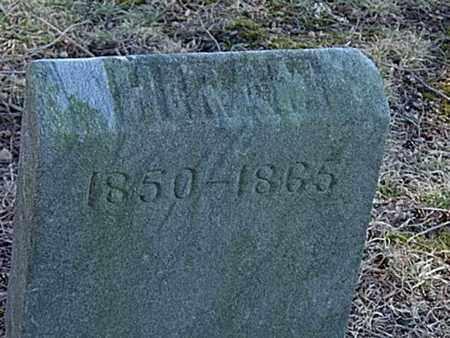 PITTENGER, HIRAM - Richland County, Ohio | HIRAM PITTENGER - Ohio Gravestone Photos