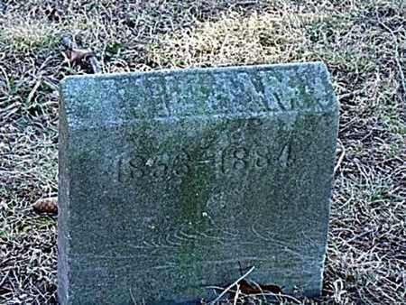 PITTENGER, WILLIAM - Richland County, Ohio | WILLIAM PITTENGER - Ohio Gravestone Photos