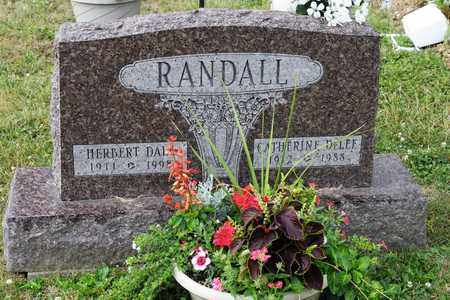 RANDALL, CATHERINE - Richland County, Ohio | CATHERINE RANDALL - Ohio Gravestone Photos