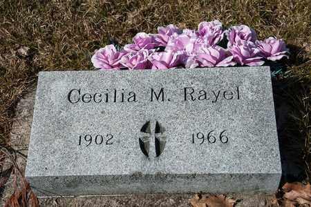 RAYEL, CECILIA M - Richland County, Ohio | CECILIA M RAYEL - Ohio Gravestone Photos