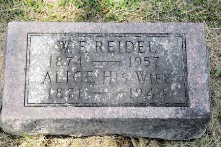 REIDEL, ALICE - Richland County, Ohio | ALICE REIDEL - Ohio Gravestone Photos