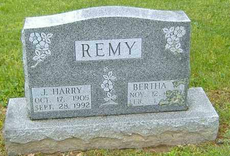 REMY, BERTHA O. - Richland County, Ohio | BERTHA O. REMY - Ohio Gravestone Photos