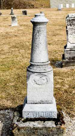 REYNOLDS, MARY - Richland County, Ohio | MARY REYNOLDS - Ohio Gravestone Photos