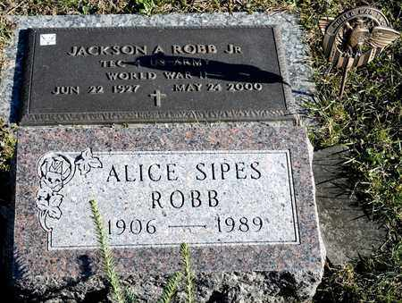 SIPES ROBB, ALICE - Richland County, Ohio | ALICE SIPES ROBB - Ohio Gravestone Photos