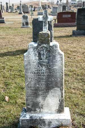 RONK, ANNIE - Richland County, Ohio | ANNIE RONK - Ohio Gravestone Photos